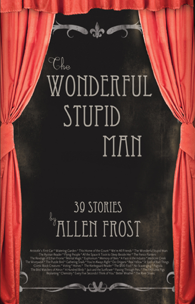 The Wonderful Stupid Man: Stories by Allen Frost